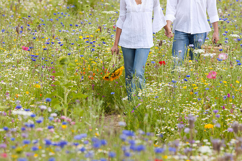 Delving into nature to tackle allergies