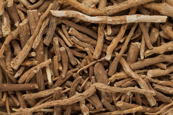 Ashwagandha: Ancient Remedy for Cognitive Health