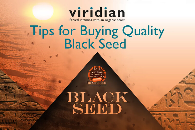 VIDEO: Five Tips on How to Choose Quality Black Seed Oil