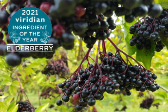 Viridian Ingredient of the Year 2021 - Elderberry