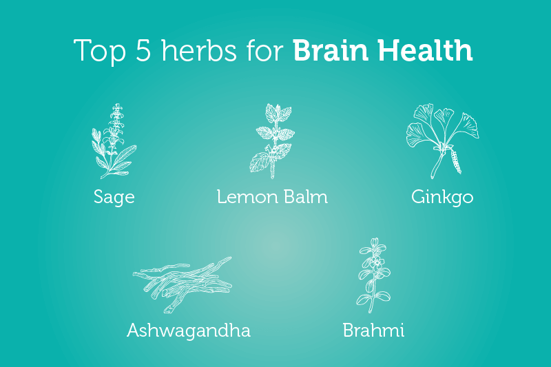 Top 5 Herbs for Brain Health