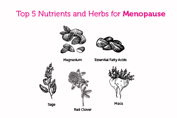Top 5 Nutrients and Herbs for Menopause
